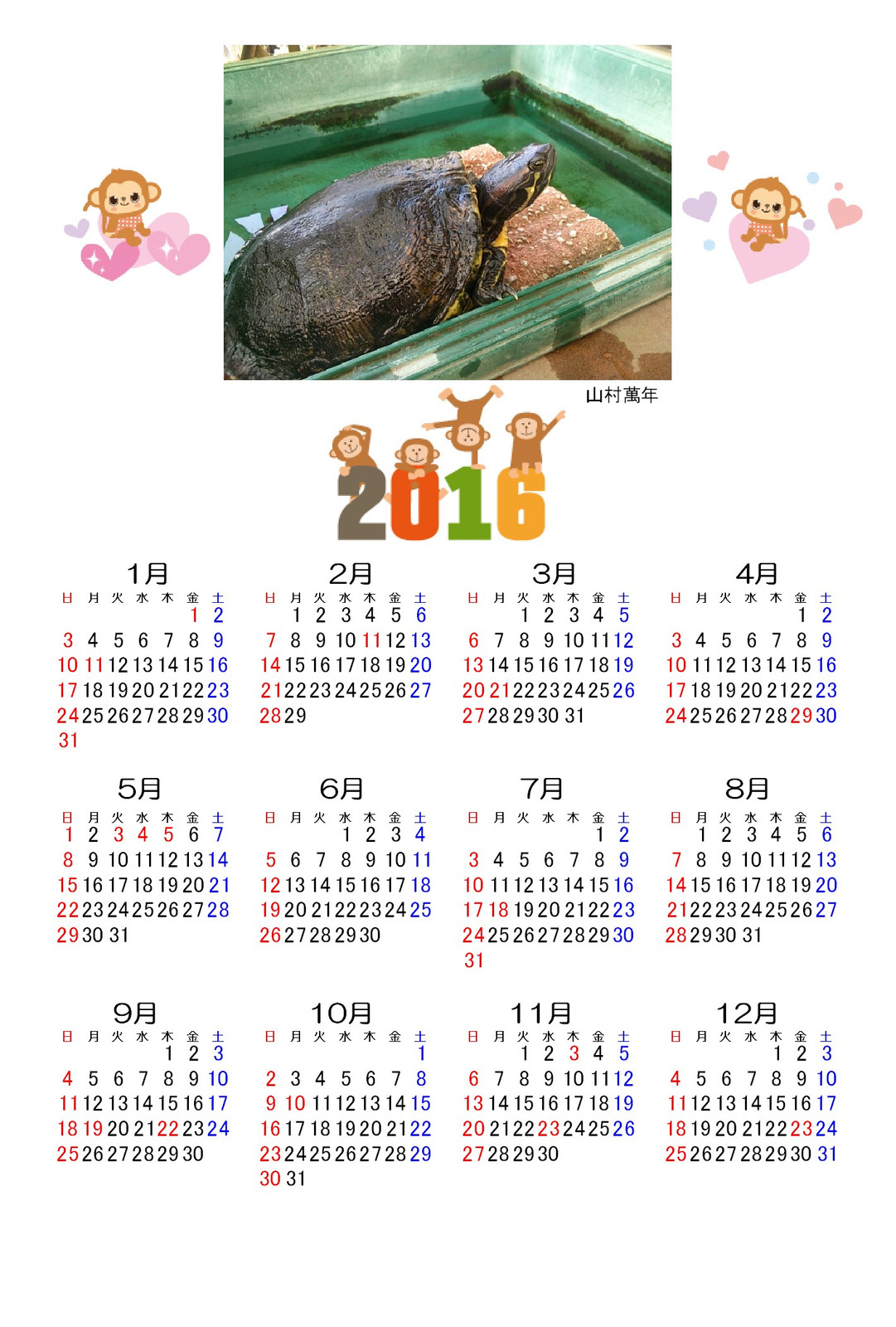 2016turtlecalendar